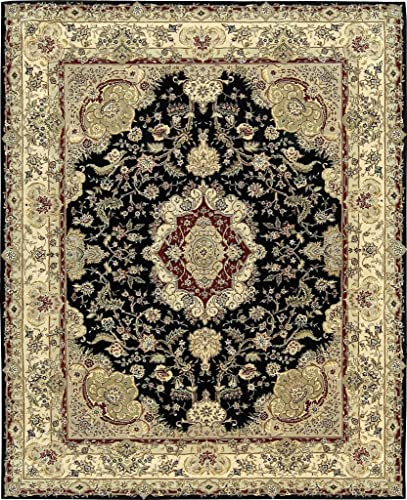 Nourison Traditional 2028 Area Rug 2 x 3 Black Rectangle