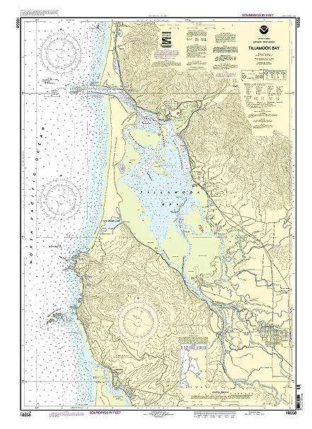 Amazon.com: 18558 tillamook Bay: Sports & Outdoors