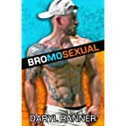 Bromosexual: An Enemies-To-Lovers Second Chance Romance
