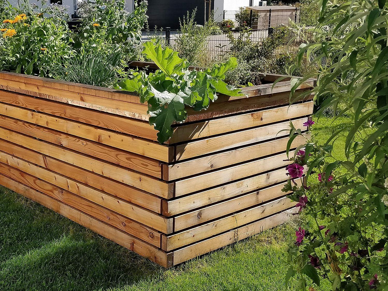 Gartenfrosch Rana de jardín para construcción Propia (180 x 120 cm ...