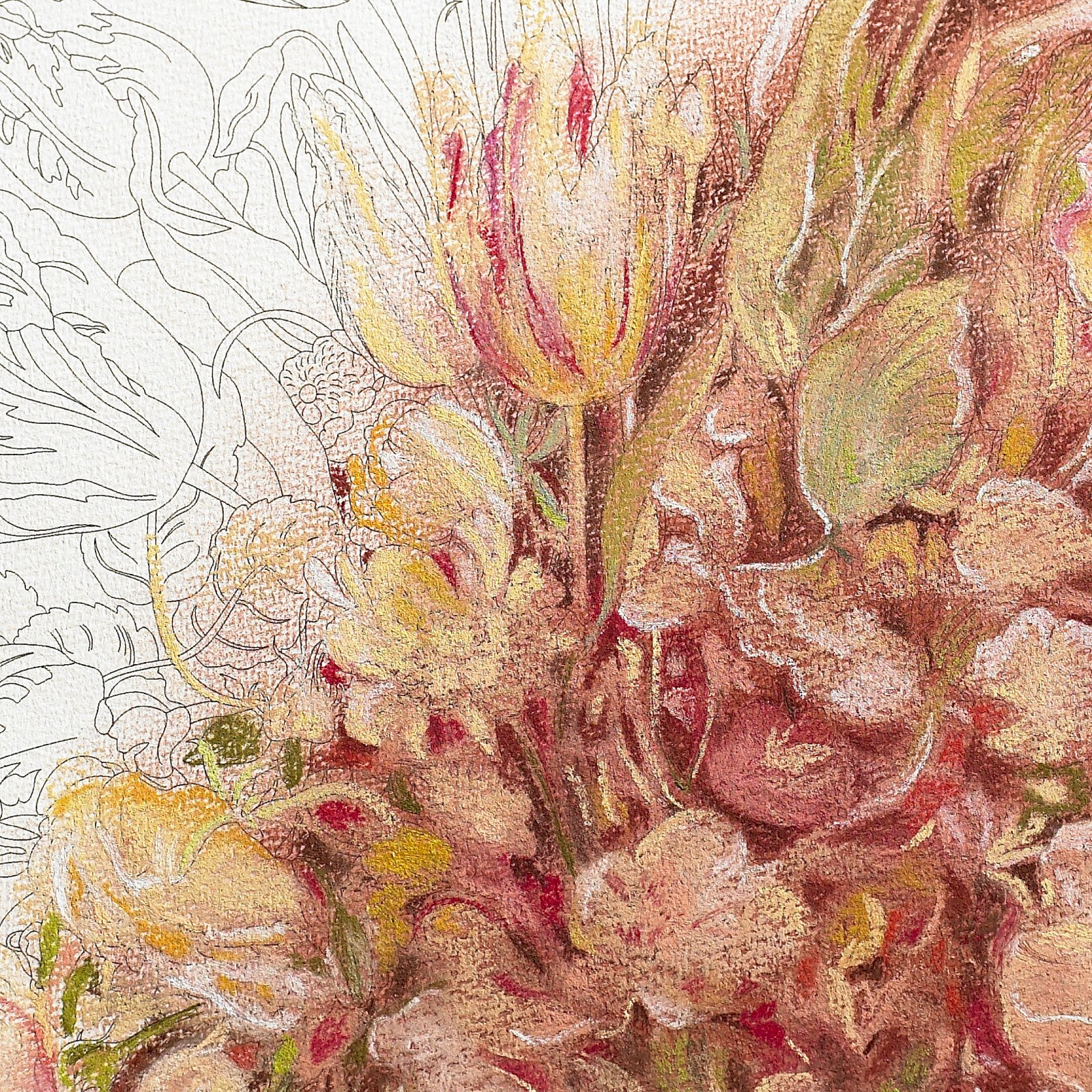 Coloring books for artists - Still Life Bouquets Artists Colouring Book Pepin Van Roojen 9789460098048 Amazon Com Books