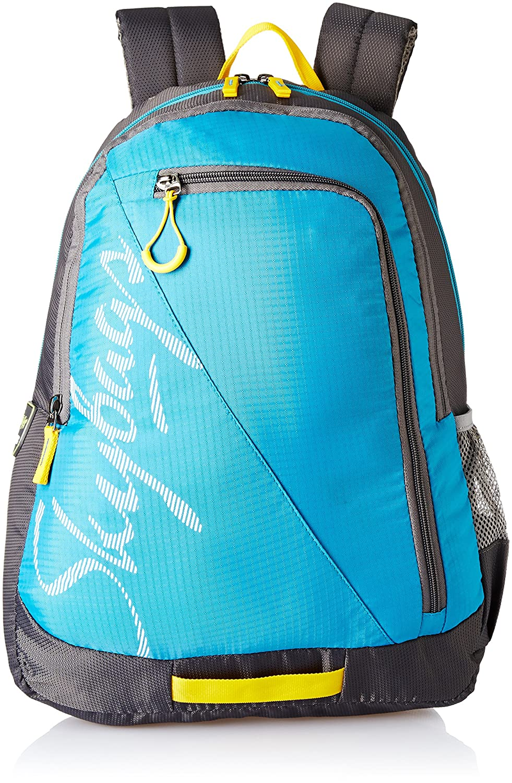 Skybags Blue Casual Backpack (BPGRO5ELBU)