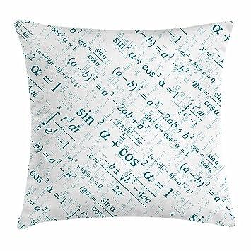 Amazon.com: Ambesonne Mathematics Classroom Decor Throw Pillow ...