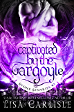 Captivated by the Gargoyle: (a gargoyle shifter and cop romance) (Stone Sentries (Boston) Book 3)