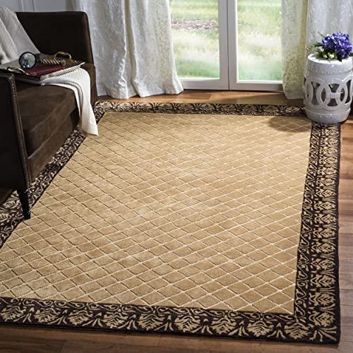 Safavieh Total Performance Collection TLP755B Ivory and Chocolate Area Rug, 6 x 9