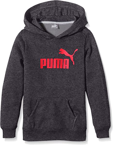 PUMA Essentials Sweat Shirt à Capuche avec Grand Logo pour