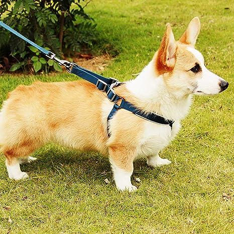 Happy hachi Arnés Perro Reflectante Acolchado Dog Harness ...