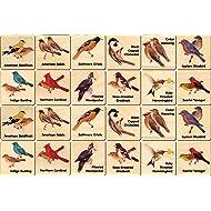 Peterson Backyard Bird Memory Tiles - Made in USA 24 tiles 2 each 12 images