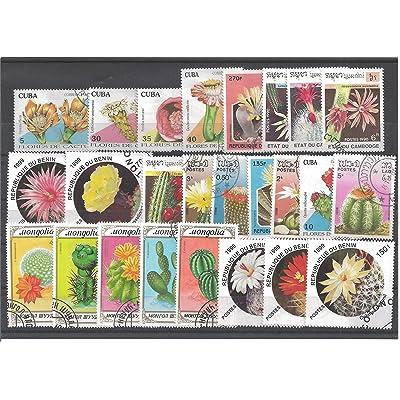 25 timbres différents FLEURS DE CACTUS