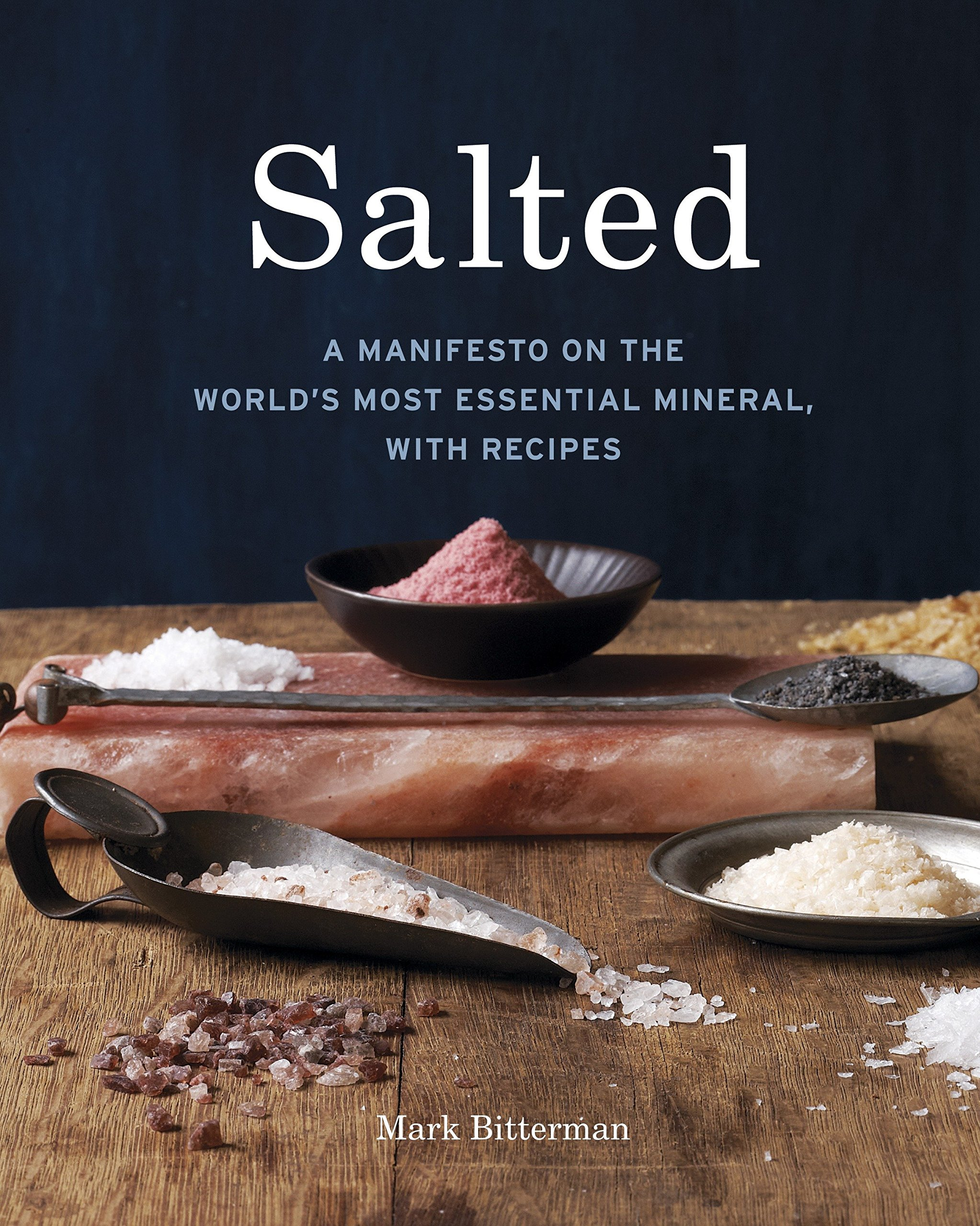 Download Salted: A Manifesto on the World's Most Essential Mineral, with Recipes pdf epub