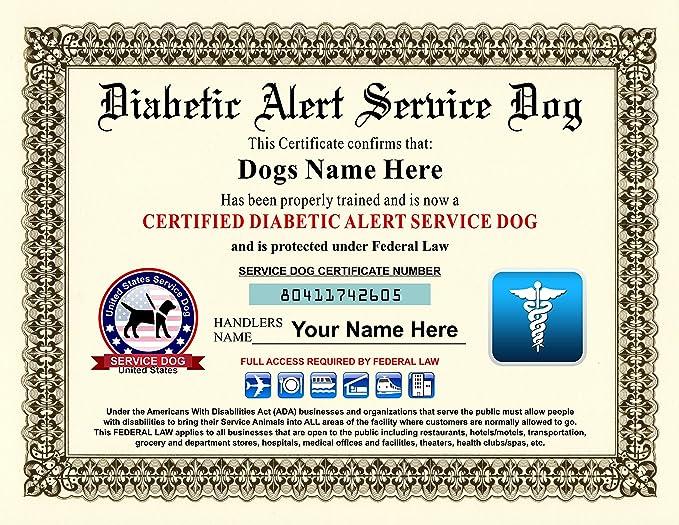 Amazon Diabetic Alert Service Dog Certificate Customizable