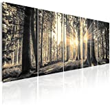murando - Bilder Wald 200x80 cm - Leinwandbilder - Fertig Aufgespannt - 5 Teilig - Wandbilder XXL - Kunstdrucke - Wandbild - Waldlandschaft Natur Wald Panorama Baum c-C-0177-b-o