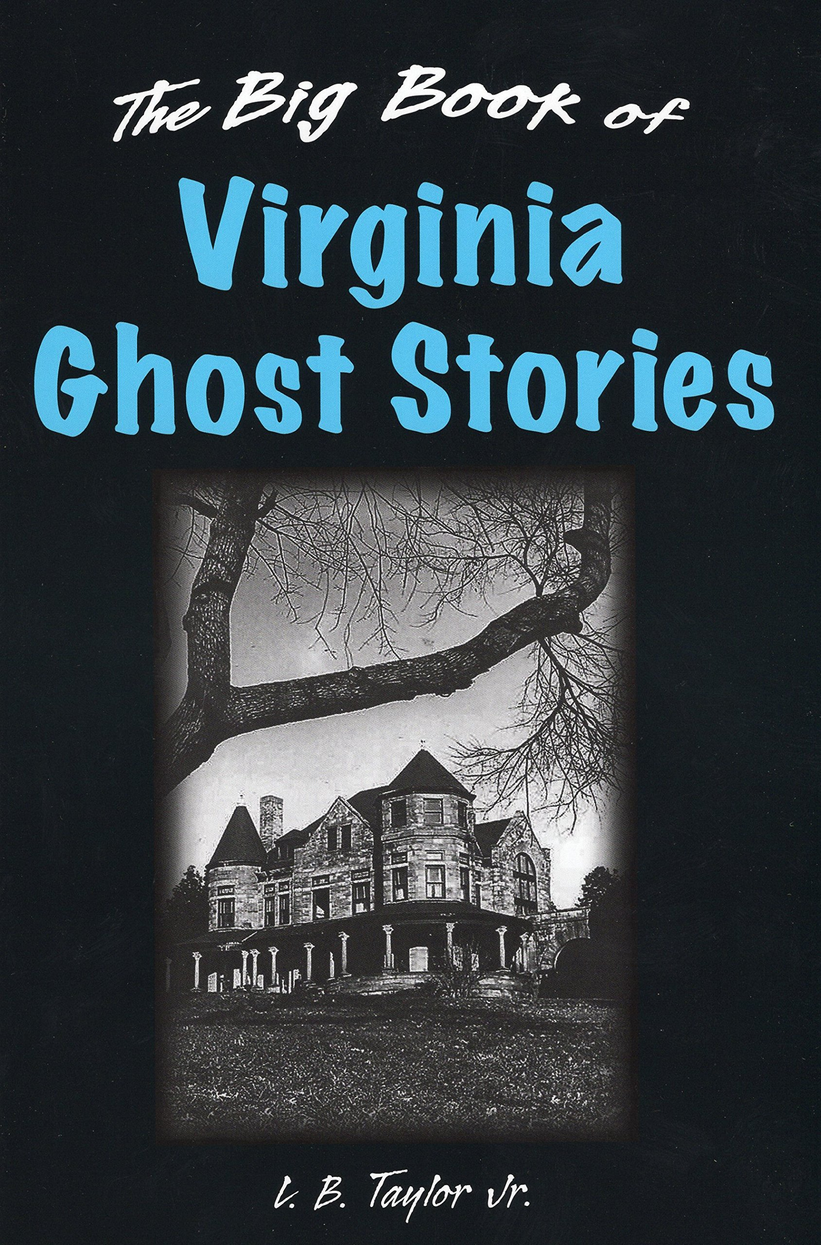 Amazon: Big Book Of Virginia Ghost Stories, The (big Book Of Ghost  Stories) (9780811705837): L B Taylor Jr: Books