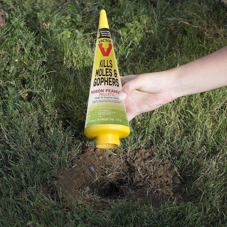 Victor M6006 Mole & Gopher Poison Peanuts : Garden & Outdoor