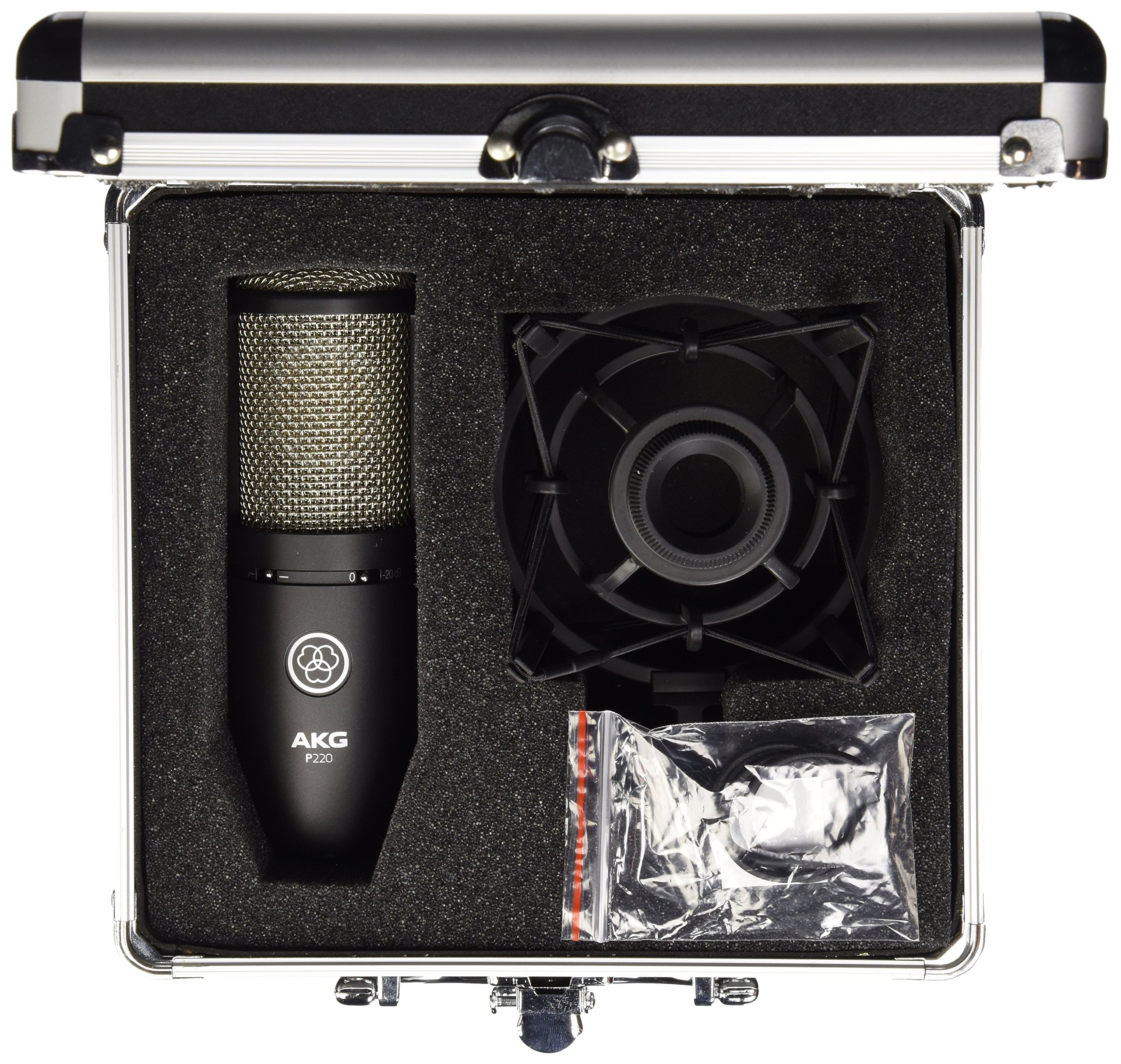 AKG P220 Vocal Condenser Microphone by AKG (Image #2)