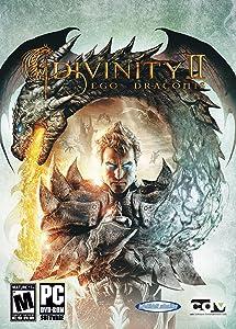 Amazon Divinity Ii Ego Draconis Pc Video Games
