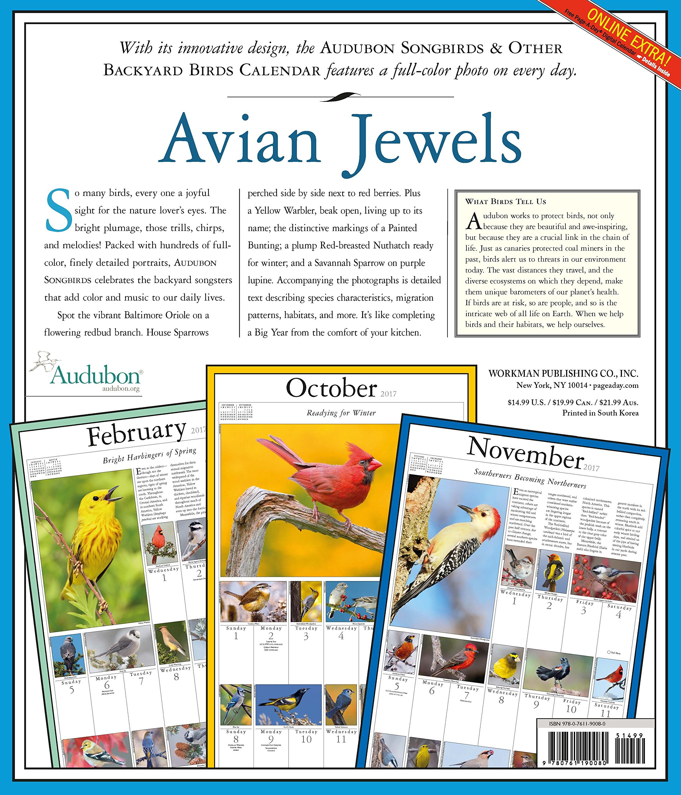 amazon com audubon songbirds u0026 other backyard birds picture a day