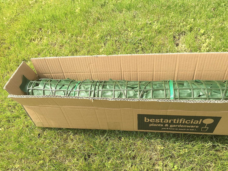 Fundamentos Verde platillo Cuadro de Flor roja 50 x 15 x 3 cm Elho 2055497