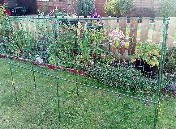 Easynets Pea apoyo kit marco H: 1, 10 m L: 1, 8 m: Amazon.es: Jardín