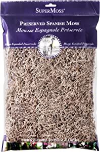 SuperMoss (26914) Spanish Moss Preserved, Natural, 8oz (200 cubic inch)