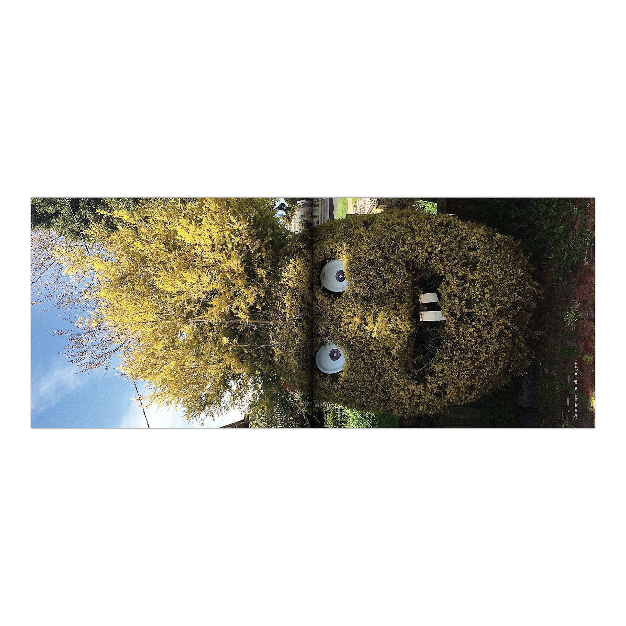 Sh*t Gardens: James Hull, Bede Brennan: 9781683490548: Amazon.com: Books