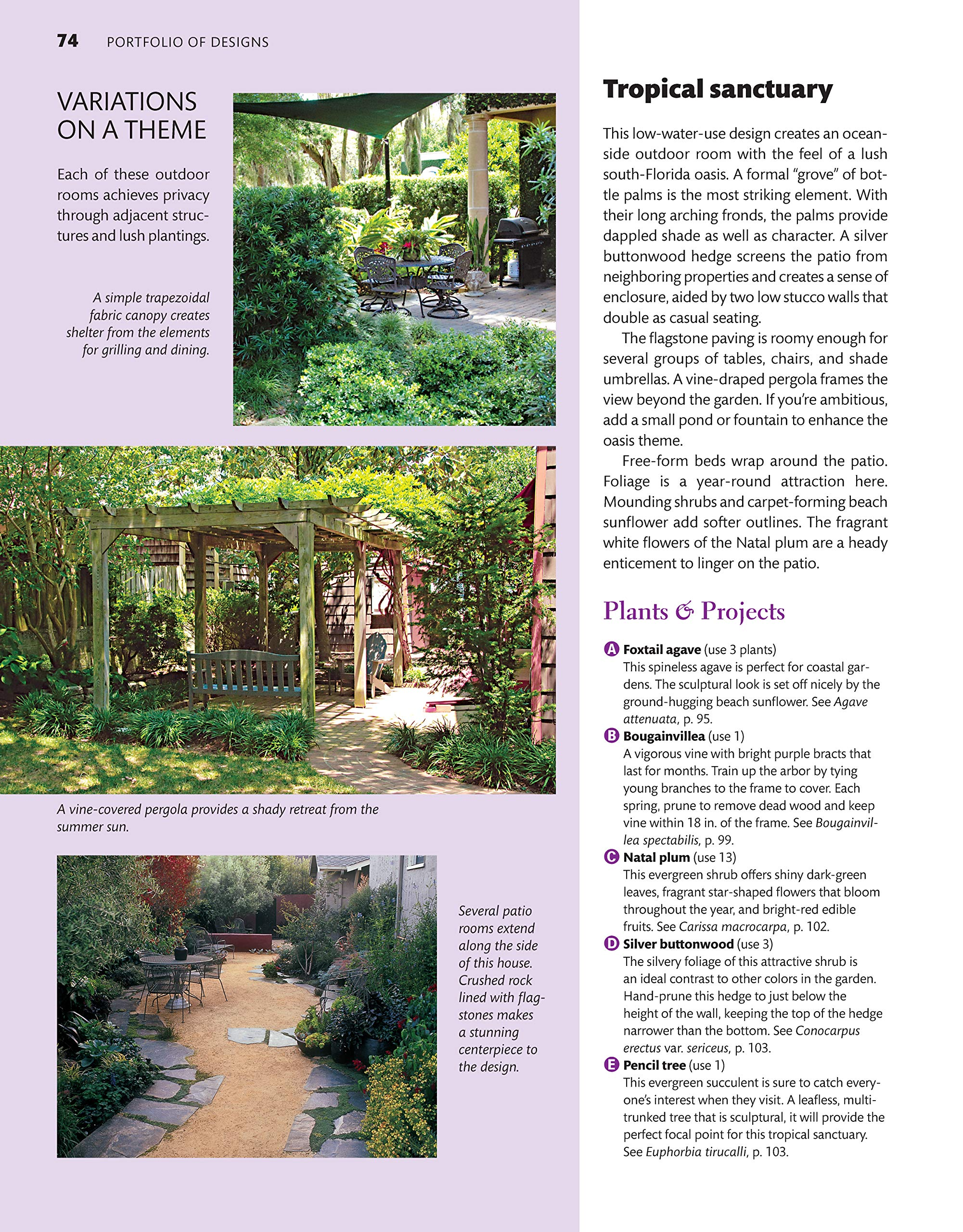 Southern Coastal Home Landscaping: Amazon.es: Pategas, Stephen G ...