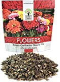 Zinnia Seeds - California Giants Mix - Large 1 Ounce Packet - 3,000 Flower Seeds - Mixed Colors and Large Blooms
