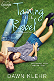 Taming the Rebel (Endless Summer)