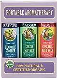 Badger Mind Balm Variety Pack Aromatherapy Balms - .6 oz Sticks (3 Pack)
