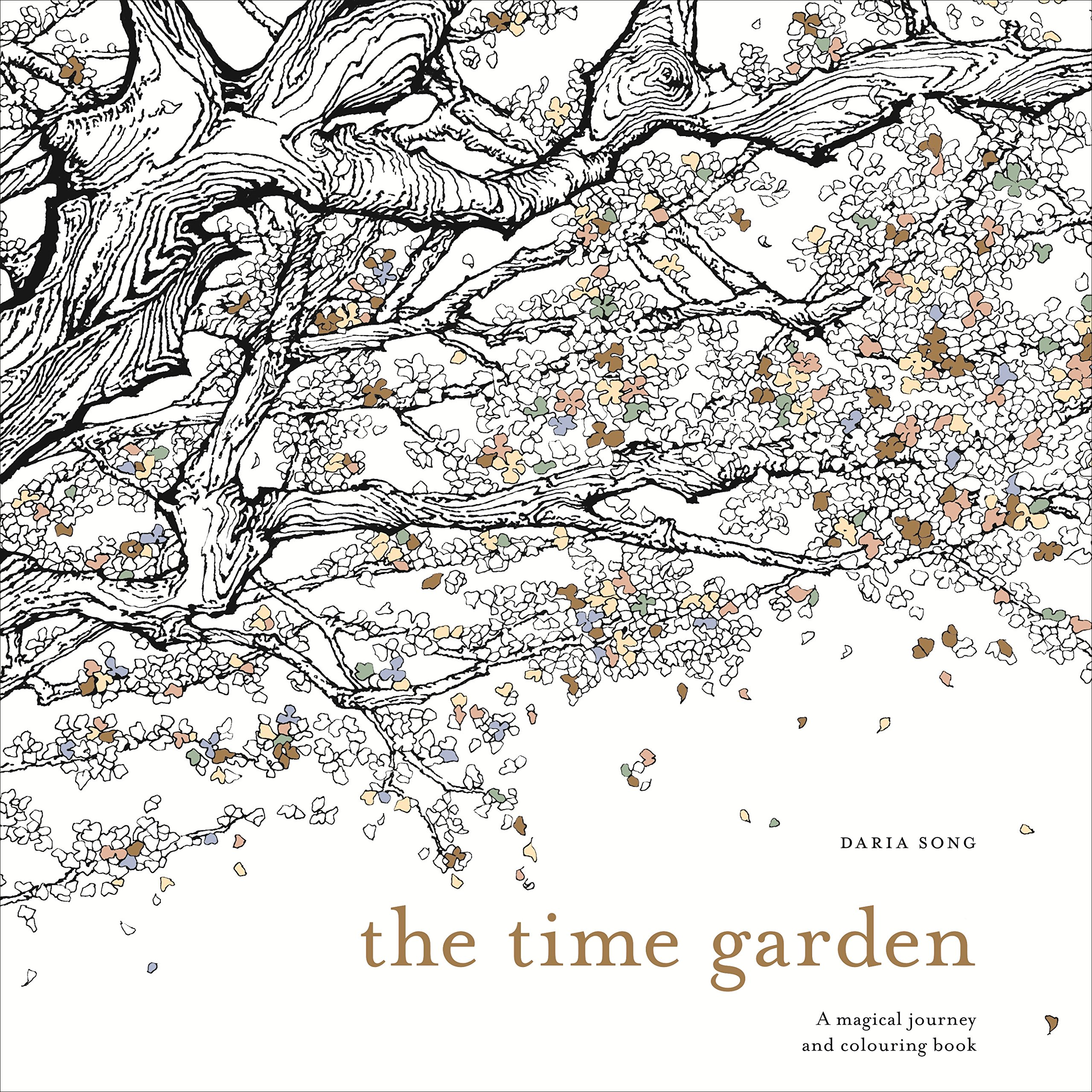 The Time Garden A Magical Journey And Colouring Book Amazoncouk Daria Song Books