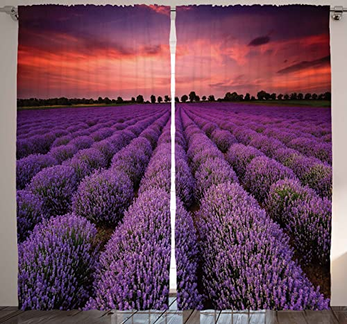 Ambesonne Lavender Curtains for Living Room, Teens Bedroom for Girls Room Decor with Nature Pictures Natural Field Two Panels Set 108 Width X 90 Inches Long Aubergine Violet Curtains Lavender