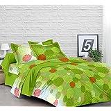 Lali Prints Stouch 185 TC Cotton Double Bedsheet with 2 Pillow Covers - Multicolour