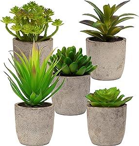 5 Artificial Succulent Plants with Pots – Realistic Greenery Mini Potted Faux Plant Arrangements for Home Office Decor, Dorm Room, Bathroom, Kitchen Table Centerpieces - Green Color Medium Size