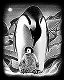 Reeves - 03042 - Loisir Créatif - CAG Argentée - Pingouins