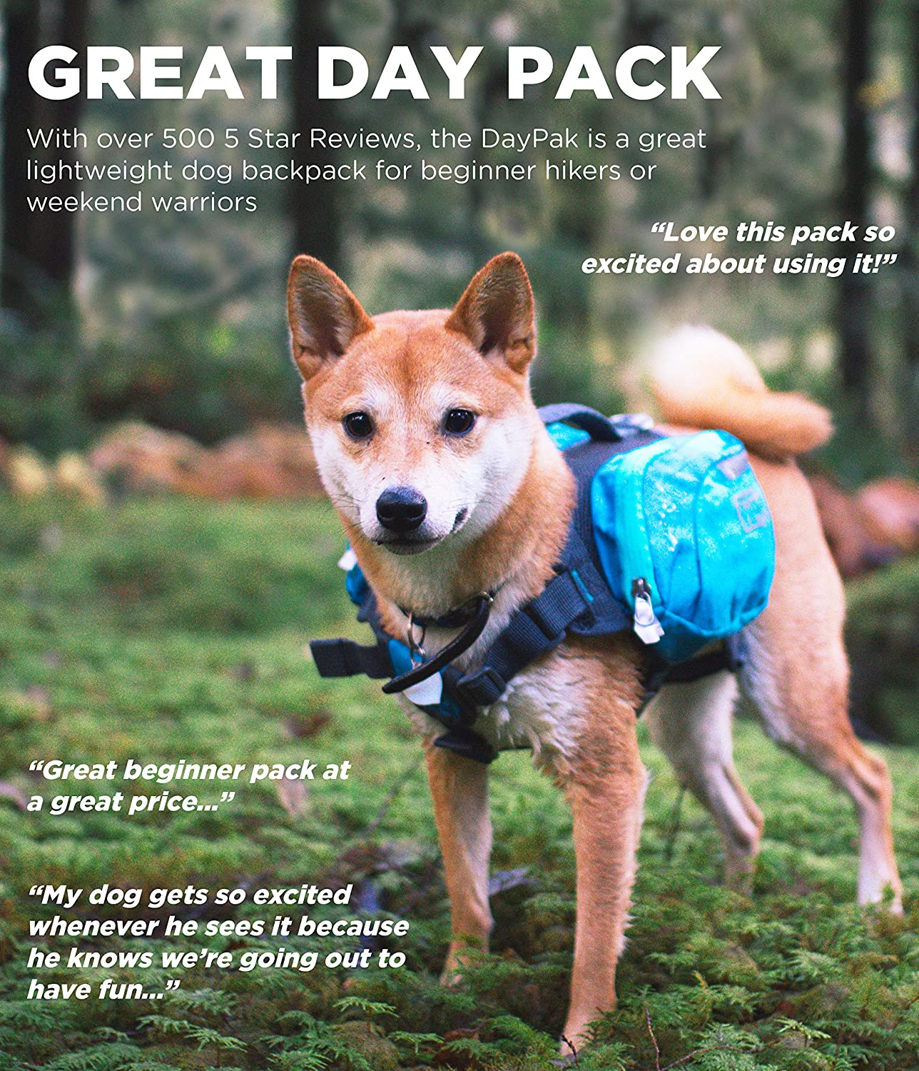 Outward Hound Daypak Dog Backpack Hiking Gear for Dogs