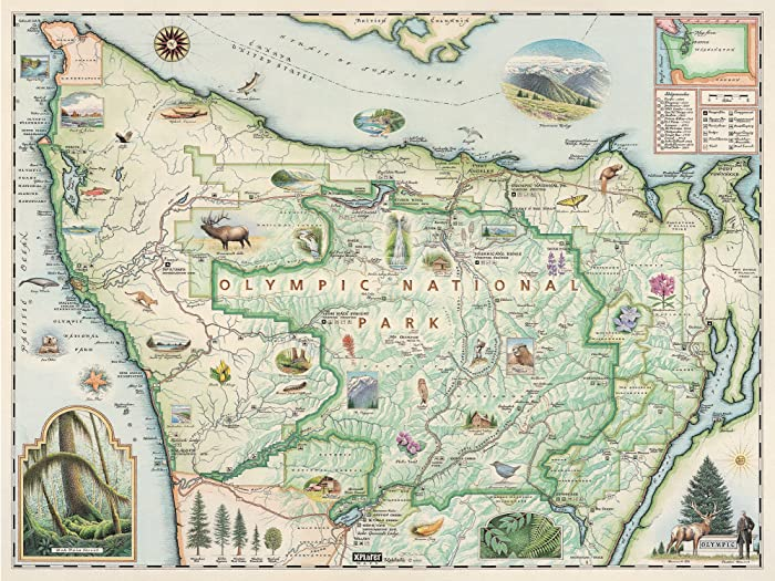 Olympic National Park Wall Art Poster - Authentic Hand Drawn Maps in Old World, Antique Style - Art Deco - Lithographic Print