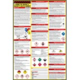 How to Read A Safety Data Sheet (SDS/MSDS) Poster | English & Spanish 2021 | 24 x 36 Inch | UV Coated Paper Sign | OSHA, HMIS