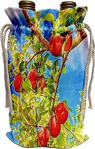 3dRose Danita Delimont - Fruits - Jonagold Apples on Trees, Yakima Valley, USA - Wine Bag (wbg_231826_1)