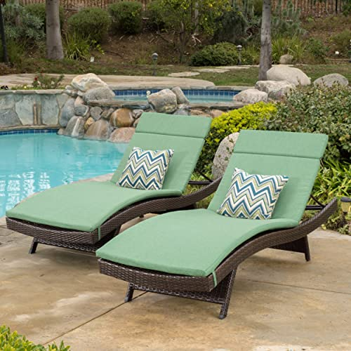 Christopher Knight Home 300653 Thelma Outdoor Wicker Chaise Lounge Chair by Lakeport, Brown