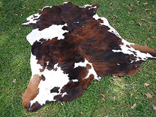 Cowhide Tricolor Brown Chocolate