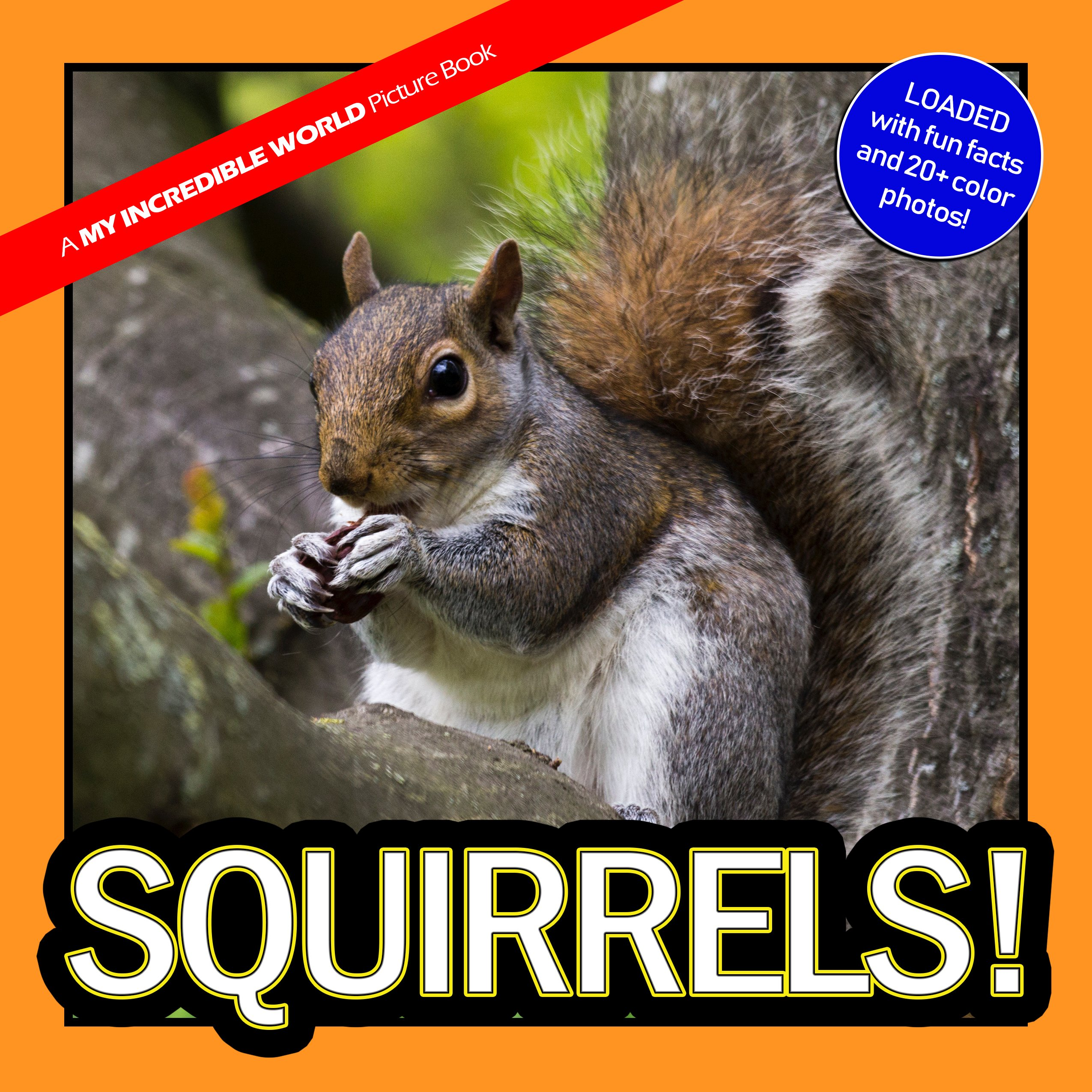 Squirrels!: A My Incredible World Picture Book for Children (English Edition)
