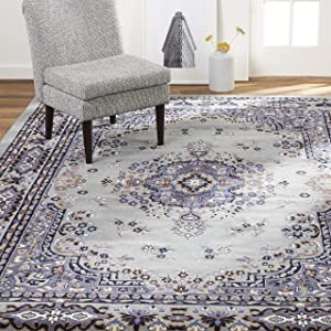 Home Dynamix Premium Sakarya Traditional Rectangle Area Rug, Oriental Silver/Blue 7'8\