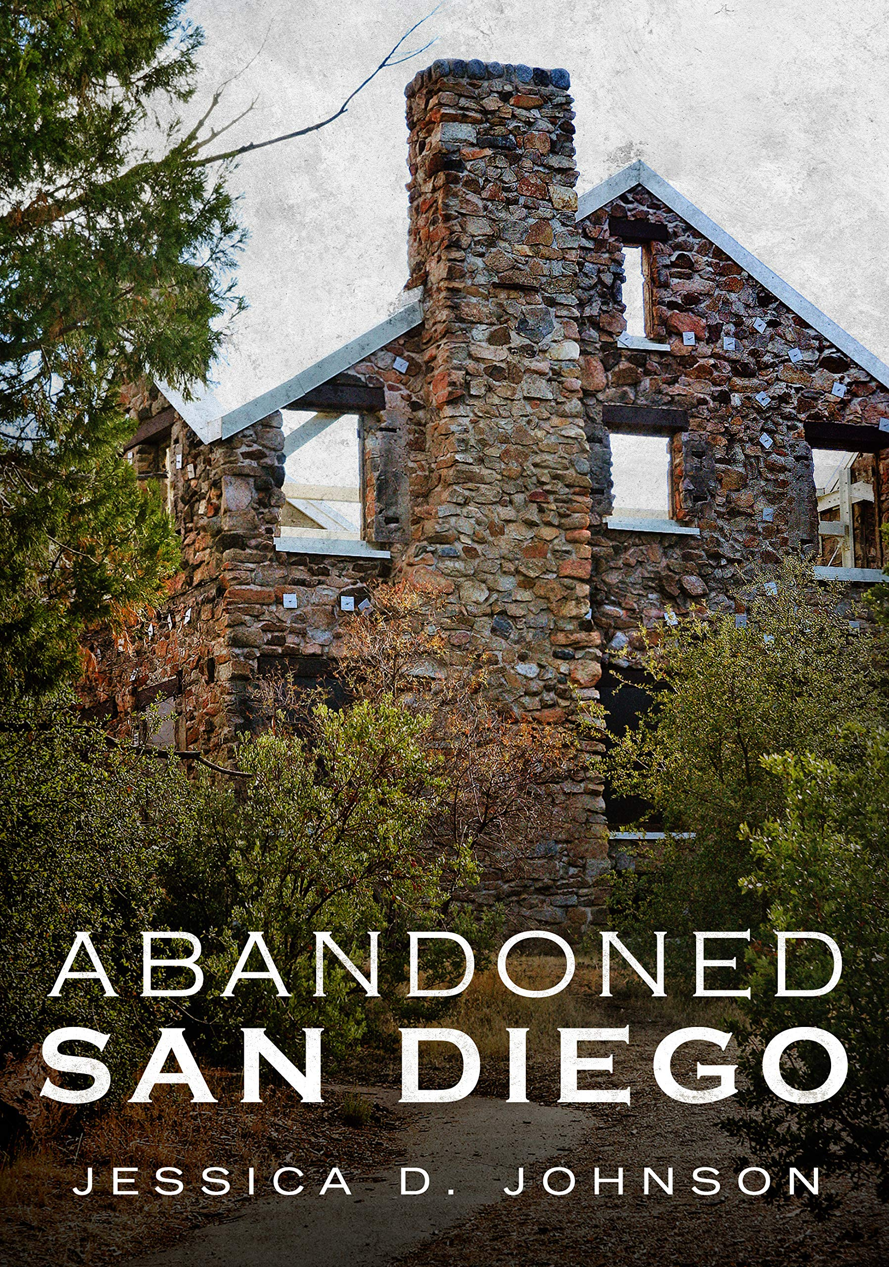Abandoned San Diego Johnson Jessica D 9781634991049 Amazon Com Books,Modern Long Narrow Bathroom Ideas