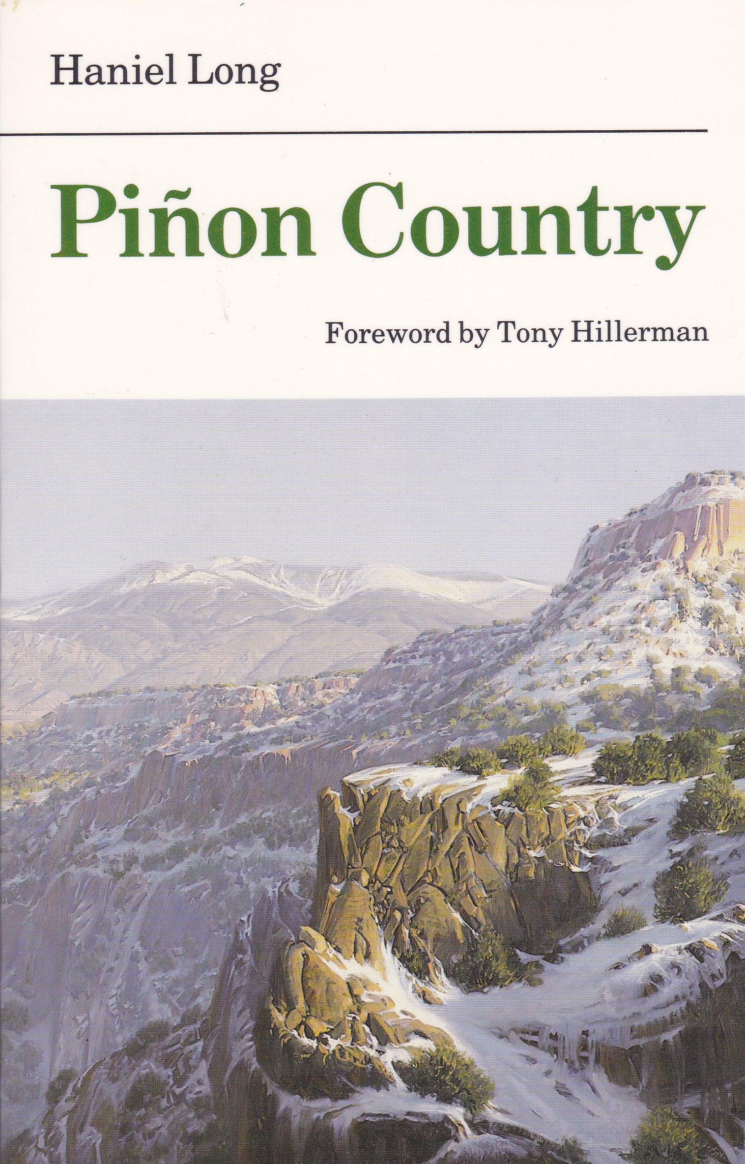 pinon country bison book