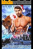 Bad Bear Santa (Bad Boy Bear Shifters Book 1)