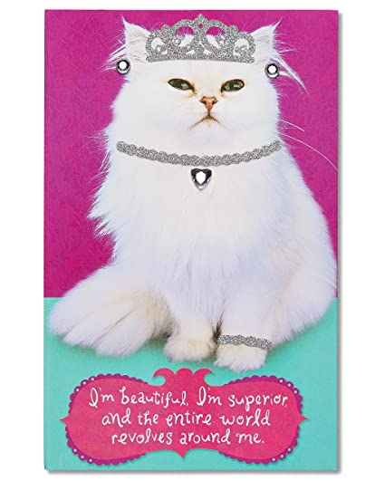 Image Unavailable Not Available For Color American Greetings Inner Cat Birthday Card With Rhinestones