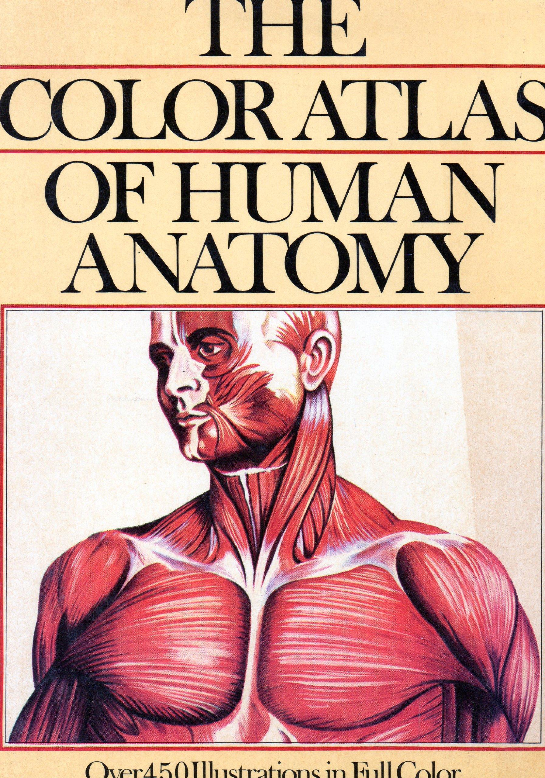 Color Atlas Of Human Anatomy Vanio Vannini Giuliano Pogliani