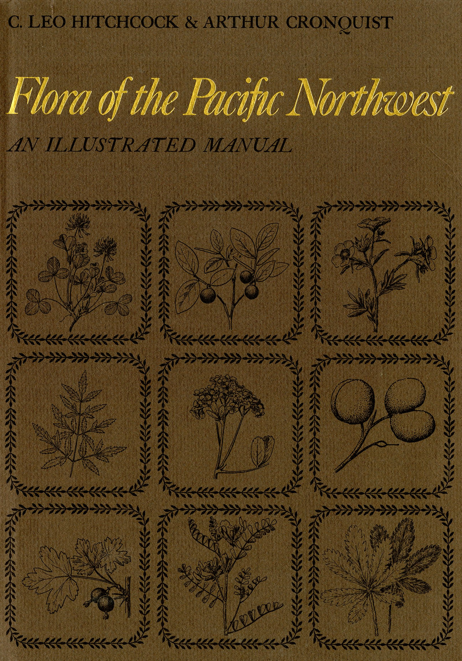 Flora of the Pacific Northwest;: An illustrated manual, : 9780295952727:  Books - Amazon.ca