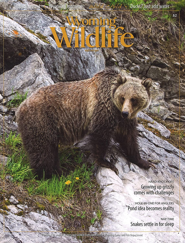 Subscribe to Wyoming Wildlife Magazine