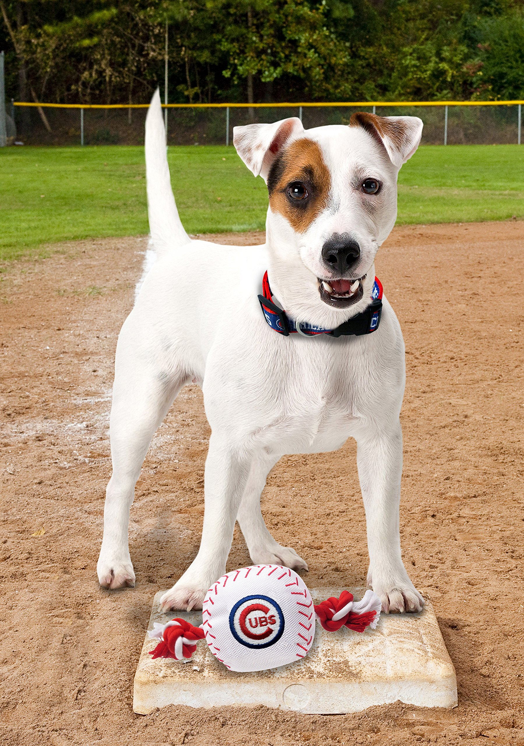 Pets First MLB Chicago Cubs Dog Nylon Baseball Rope Toy by Pets First (Image #2)